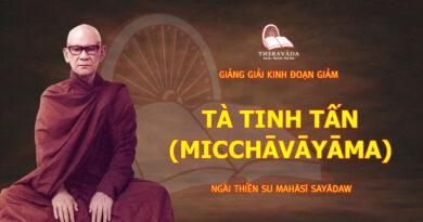 GIẢNG GIẢI KINH ĐOẠN GIẢM - TÀ TINH TẤN (MICCHĀVĀYĀMA)
