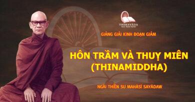 GIẢNG GIẢI KINH ĐOẠN GIẢM - HÔN TRẦM VÀ THUỴ MIÊN (THINAMIDDHA)