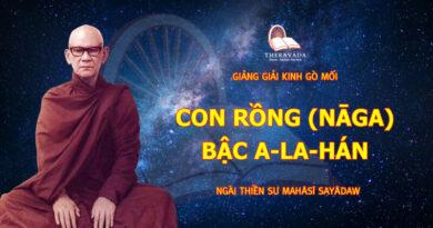 GIẢNG GIẢI KINH GÒ MỐI - CON RỒNG (NĀGA) - BẬC A-LA-HÁN