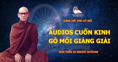 Audios Cuốn Kinh Gò Mối Giảng Giải – Ngài Thiền Sư Mahāsī Sayādaw