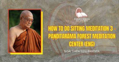 VIDEOS HOW TO DO SITTING MEDITATION 3 - PAṆḌITARĀMA FOREST MEDITATION CENTER (ENG)